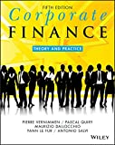 Corporate Finance: Theory and Practice (English Edition)