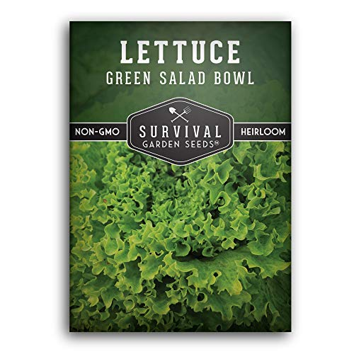Survival Garden Seeds - Green Salad Bowl Lettuce Seed for Planting - Packet with Instructions to Plant and Grow in Your Home Vegetable Garden - Non-GMO Heirloom Variety