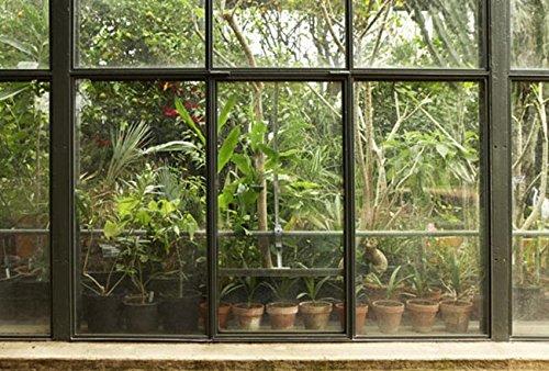 Scenolia Tapisserie Toile Textile Jardin et Patio Tropical 4 x 2,70m - Décoration Murale Effet Trompe l'Oeil - Revêtement Panoramique Poster XXL - Pose Facile et Qualité HD