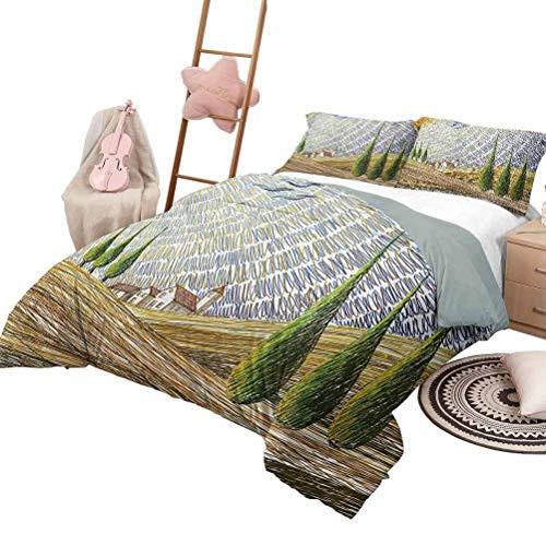 Quilt Set mit Bettlaken Italienische weiche Ganzjahres-Baumwollmischung Tagesdecke Van Gogh Style Italienisches Tal Ländliche Felder mit europäischer Landschaftsmalerei Druck in voller Größe Mehrfarbi