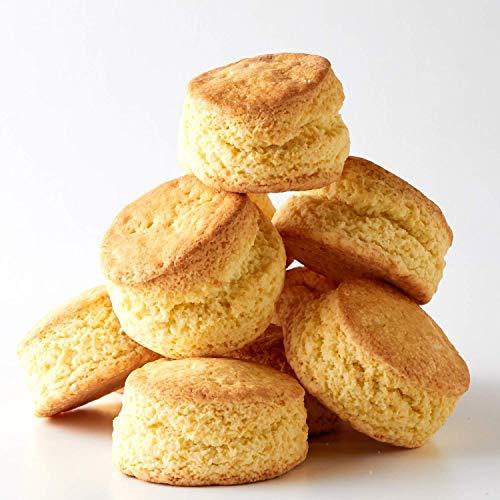 豆乳おからスコーン おからクッキーに飽きた方に カロリー約30%オフ!! (10個セット)