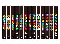 Lifework Concierge ギター 指板 練習 指 フレット シール ステッカー スケール ギターコード ギター指板シール