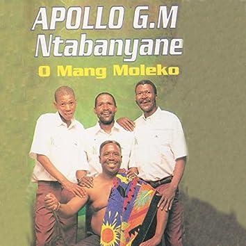 O Mang Moleko