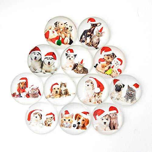 Christmas Animal Refrigerator Magnet Party Set of 12 Pack 3D Round Face for Silver Fridge Office Dry Erase Board Stainless Steel Door Freezer Whiteboard Cabinet Magnetic Fun for Adult Girl Boy Kid