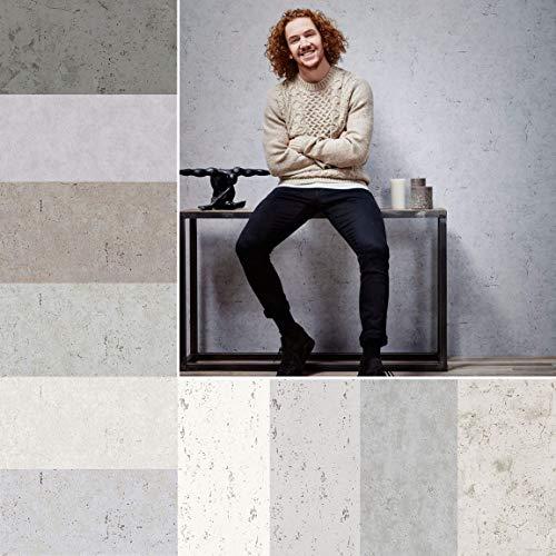 Paul Bergmann. Betontapete 3D Optik Wandfarbe Betonoptik Spachtel Stil. Moderne Sichtbeton Tapete aus Berlin