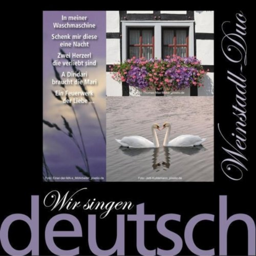 Wir Singen Deutsch - In Meiner Waschmaschine