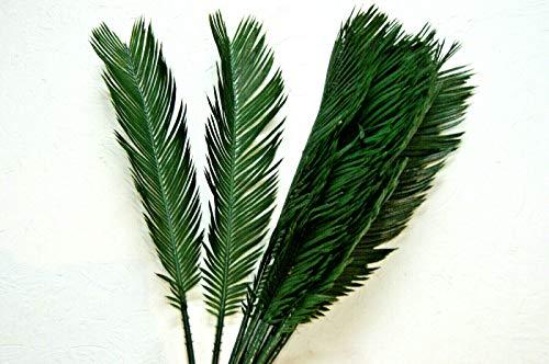 12 St.Palmwedel Kunstpalmen Künstliche Blätter Deko künstliche Floristik Strauß (CB 42)