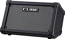 Roland Cube Street Busking AMP