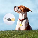 HOUSWEETY Personalisiert Haustier ID Tag Hund Tag MIT Gravur Service Hundemarke Anhaenger aus Edelstahl Silber - 6