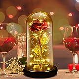Cozime Rosa Eterna Rosas Bella y Bestia, Cúpula de Cristal Elegante, Ideal para Enviar Novia, Esposas,Día de la Madre, Aniversario de Bodas, Cumpleaños… (Rosa Roja)