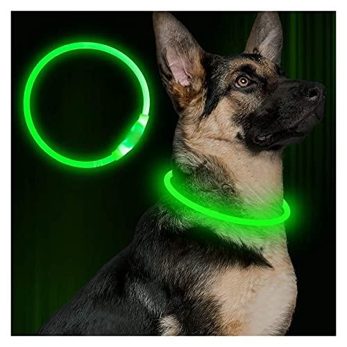 Collar Luminoso Perro, Mascota Parpadeante USB Collar Brillante Recargable Collar de Seguridad...