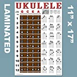Laminated Ukulele Fretboard Notes & Easy Beginner Chord Chart 11'x17' Instructional Poster for Soprano Concert Tenor Uke by A New Song Music