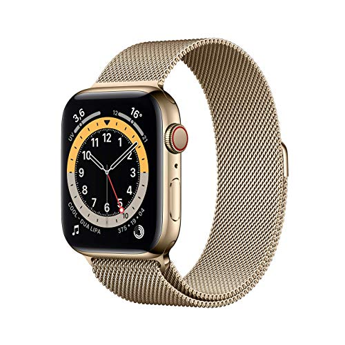 Apple Watch Series 6 (GPS + Cellular, 44 mm) Cassa in acciaio inossidabile color oro con Loop Cassa in maglia milanese color oro
