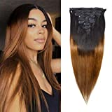 Clip in Human Hair Extensions Heat Resistant Ombre Straight Hair 130g 100% Human Hair 8Pcs Total of 18 Clips Hair Extensions For Black Women Virgin Hair(20 Inch,#1B/30 Brown)