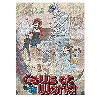 はたらく細胞 Cells at Work! ジグソーパズル 500/1000ピース アニメ日本スタイルミニマリスト 木製大人パズル 子供家の装飾ギフトゲーム (12歳以上が適しています)