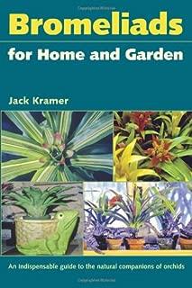 Best bromeliad home depot Reviews