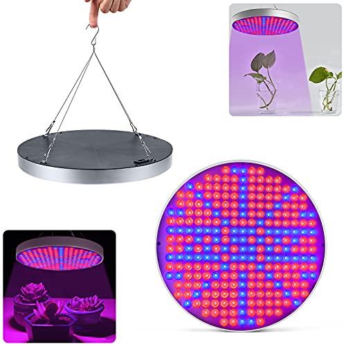 Aufun 50W 250LEDs Pflanzenlampe Pflanzenlicht - Vollspektrum Led Grow Light Panel mit Rot Blau IR UV - für Gewächshaus Hydroponik Grow Box Veg Wachstum (50W)