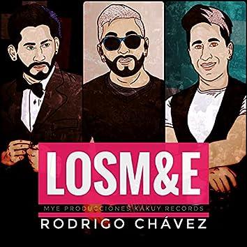 Lloran las Rosas (Cover)