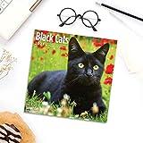 2021 Black Cats Wall Calendar by Bright Day, 12 x 12 Inch, Kitten Kitty
