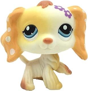 Meidexian888 Rare Littlest Pet Shop, LPS Cartoon Cream Tan Brown Heart Face Short Hair Cat