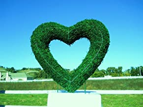 Best heart shaped ivy topiary Reviews