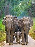 Rompecabezas De 1000 Piezas,Serie De Animales Elephant Family Wooden Family Puzzle Set, Desafío Cerebral Para Niños Jigsaw Games, Rompecabezas Intelectuales De Educación Padre-Hijo Juguete, Decora