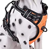 Dog Harness No Pull, Adjustable Vest Harness with Handle & 2 Leash Attachments