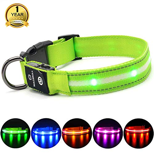 MASBRILL Leuchthalsband für Hunde Aufladbar LED Hundehalsband 100{2191b7bbde4d09f569ae7e4bc18dc8f8ba81bbe24f6d0ccc4d047d725b5a6c19} Wasserdicht Blinkende Lichter mit USB (S, 40cm, Grün)
