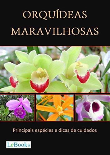 Orquídeas maravilhosas: Principais espécies e dicas de cuidados (Coleção Casa & Jardim)