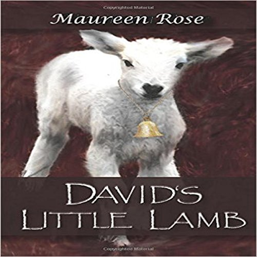 David's Little Lamb audiobook cover art