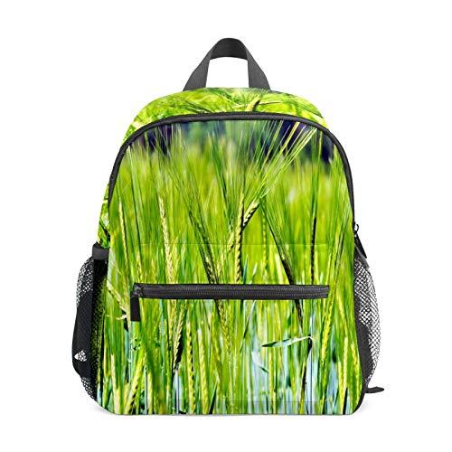 Kinder-Rucksack für Vorschule, für Jungen und Mädchen, leicht, für 1–6 Jahre, perfekter Rucksack für Kleinkinder im Kindergarten, grünes Getreide, Pflanzen, Weizen, Landwirtschaft