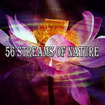 56 Streams Of Nature