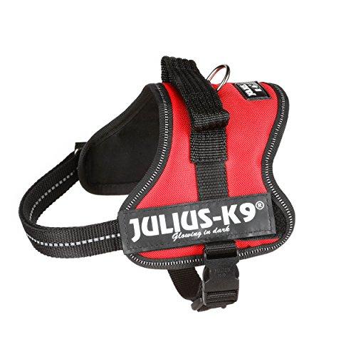 JULIUS-K9 - Arnés para perros, color Rojo, talla XS / Mini-Mini