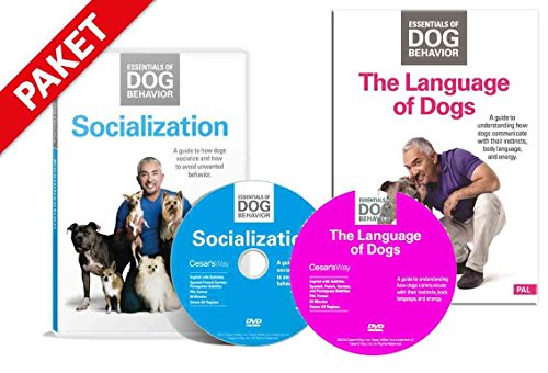 Socialization & The language of Dogs Bundle Paket Sozialisierung & Sprache der Hunde Cesar Millan Hundeflüsterer