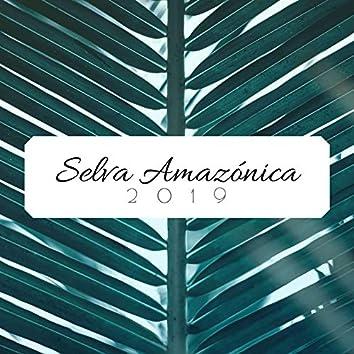 Selva Amazónica 2019: 1 Hora de Música Relajante para Trabajar y Estudiar con Sonidos de la Naturaleza