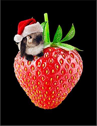 【いちご サンタ ウサギ 苺 クリスマス サンタクロース ねこ 猫 苺】 余白部分にオリジナルメッセージお入れします!ポストカード・はがき(黒背景)