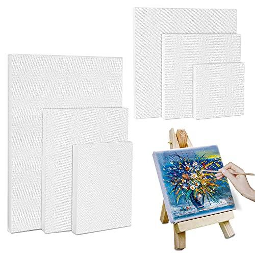 Set de Lienzos Preestirados, 6 Piezas Paneles de Lienzos, Lienzo en Blanco, Lienzo para Pintar para Dibujar, Decoración de Arte, Regalo de Manualidades DIY (10*10/ 10*15/ 15*15/ 15*20/ 20*20/ 20*30CM)