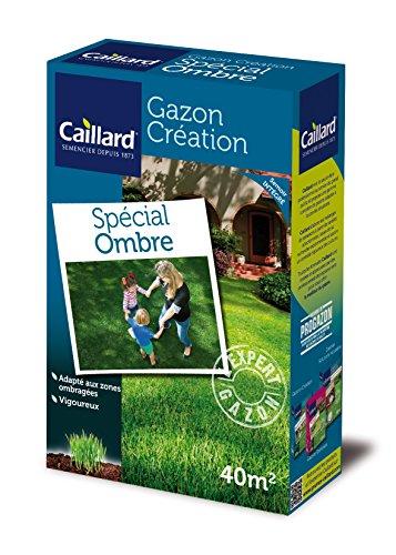 Caillard PFSA19949 Graines de Gazon Spécial Ombre 1 kg 40 m²