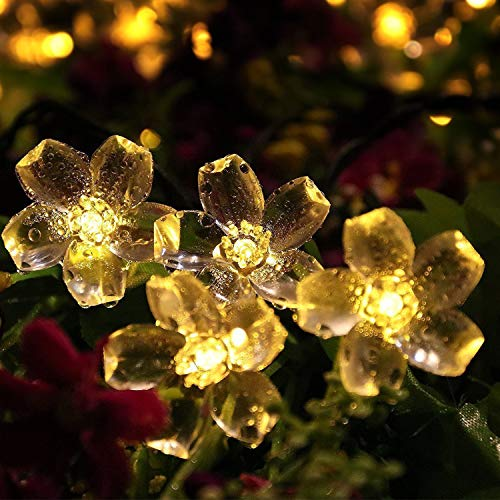 Solar Lichterkette ,Mr.Twinklelight 6.5M 50er LED Lichterkette Außen Blumen Garten Licht für Garten, Terrasse, Zuhause, Weihnachtsdeko und Partys (Warmweiß)