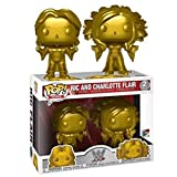 Good Buy Funko Pop WWE : RIC Flair & Charlotte Flair 3.75inch Vinyl Gift for Professional Wrestling Fans Figure