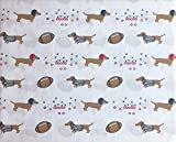 All Star Arena 3 Piece Twin Size Bed Sheet Set Football Dogs Dachsunds with Helmets and Referee Shirts