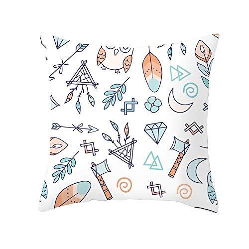 Fundas de Cojín Decorativos Gráfico colorido Cuadradas Terciopelo Suave Funda de Almohada Cubierta para Cojines Sofá Sala de Estar Dormitorio Cama Decor Throw Pillow Case Pillowcase+core,45x45cm R1839