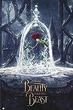 Poster Disney La Belle et la Bête - Rose (61cm x 91,5cm) + un joli emballage cadeau