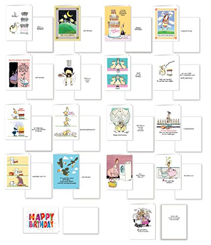 Boxed Assorted All Occasion Greeting Cards & Envelopes - 12 Birthday, 1 Anniversary, 2 Congrats, 1 Get Well, 1 Thank You, 1 Friendship