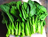 Frais Heirloom KAILAAN chinois brocoli chou frisé Kai LAN - 500 graines - Verts asiatiques - GAI Lan
