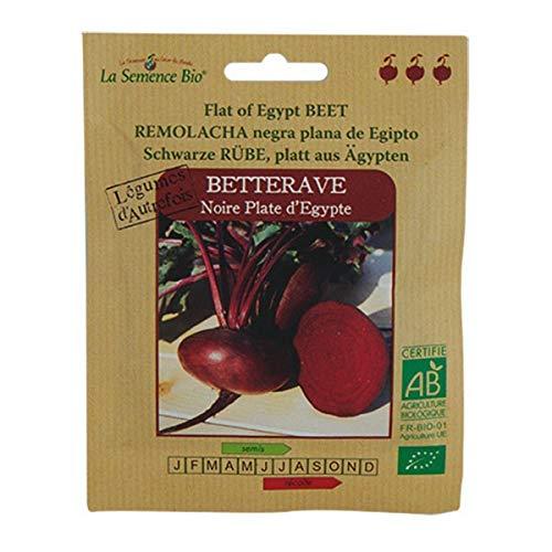 Graines Bio - Betterave Noir Plate D'égypte - semence biologique