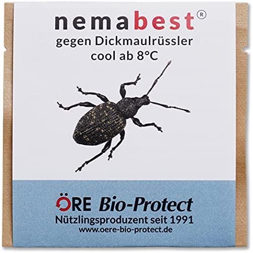 nemabest® cool HB+SF Nematoden zur Bekämpfung des Dickmaulrüsslers - 50 Mio. für 100m²