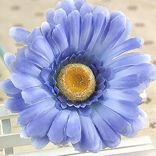 Fuduoduo JardineríA Aire Libre,Semillas de crisantemo Africano fáciles de Vivir-G_1000PCS,Mezcla Semillas Ornamentales