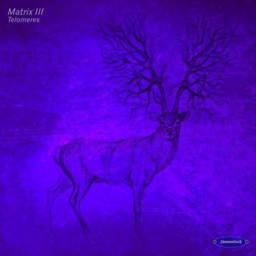 Matrix III