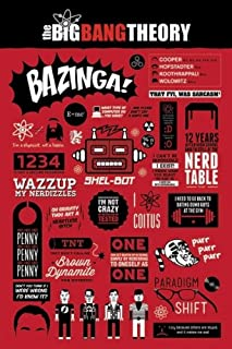 The Big Bang Theory - TV Show Poster / Print (Infographic - Quotes, Facts & Pictograms) (Size: 24
